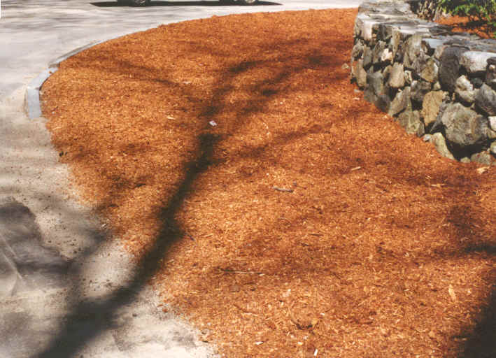 Mulch Next to Rock Wall