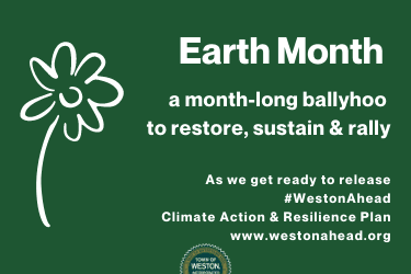 Earth-Month banner